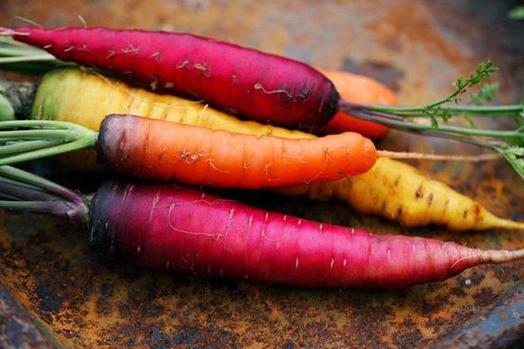 carottes - nos recettes