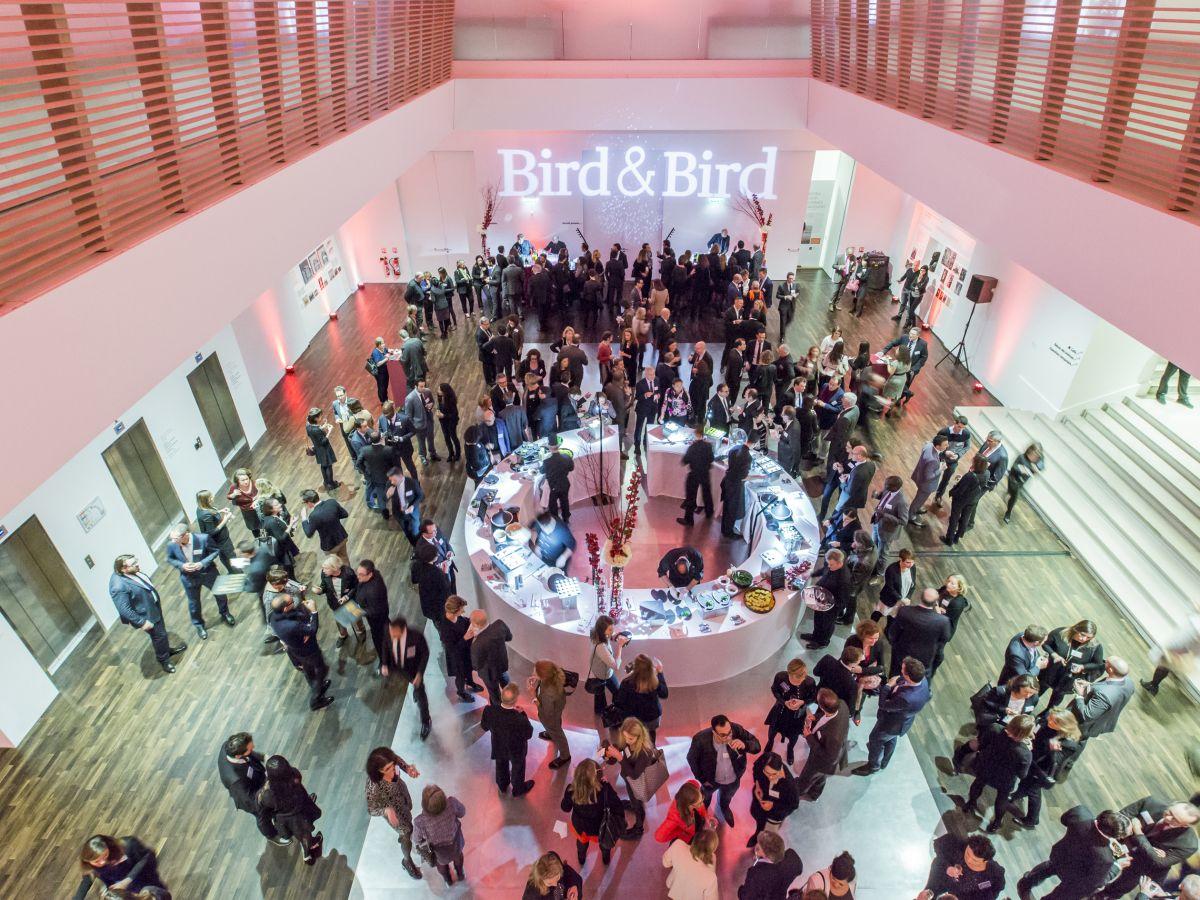 BIRD-BIRD- au Musée de l'Homme